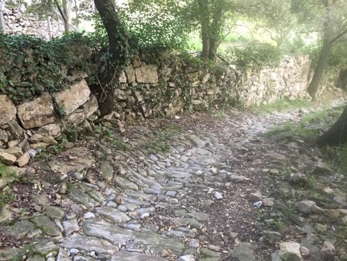 chemin de randonnée, près du gite Les Asphodèles - Vallée de la Vis