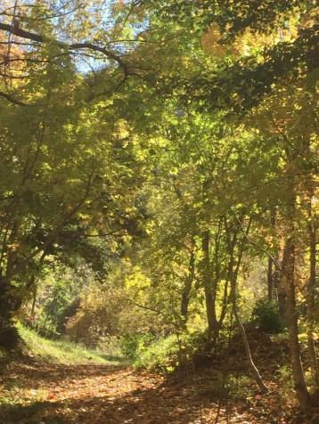 Marcher en automne au gite Les Asphodèles - Vallée de la VIs