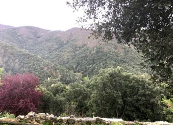 Randonée d'automne au gite Les Asphodèles-Vallée de la Vis