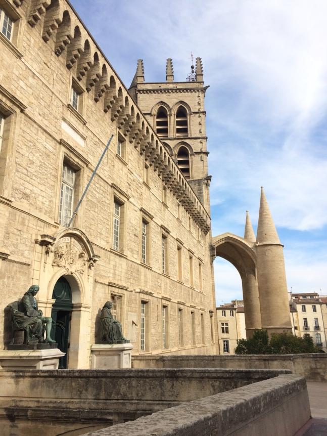 La Cathédrale Saint Pierre de Montpellier