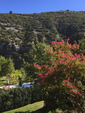 piscine fleurs automne
