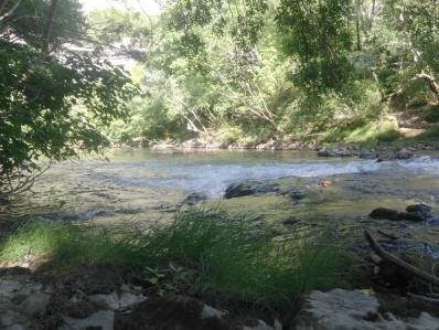 Rivière Vis rapide, au gite Les Asphodèles - Vallée de la VIs