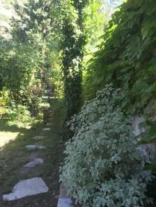 Cheminement vers cuisine d'été au gite Les Asphodèles - Vallée de la Vis